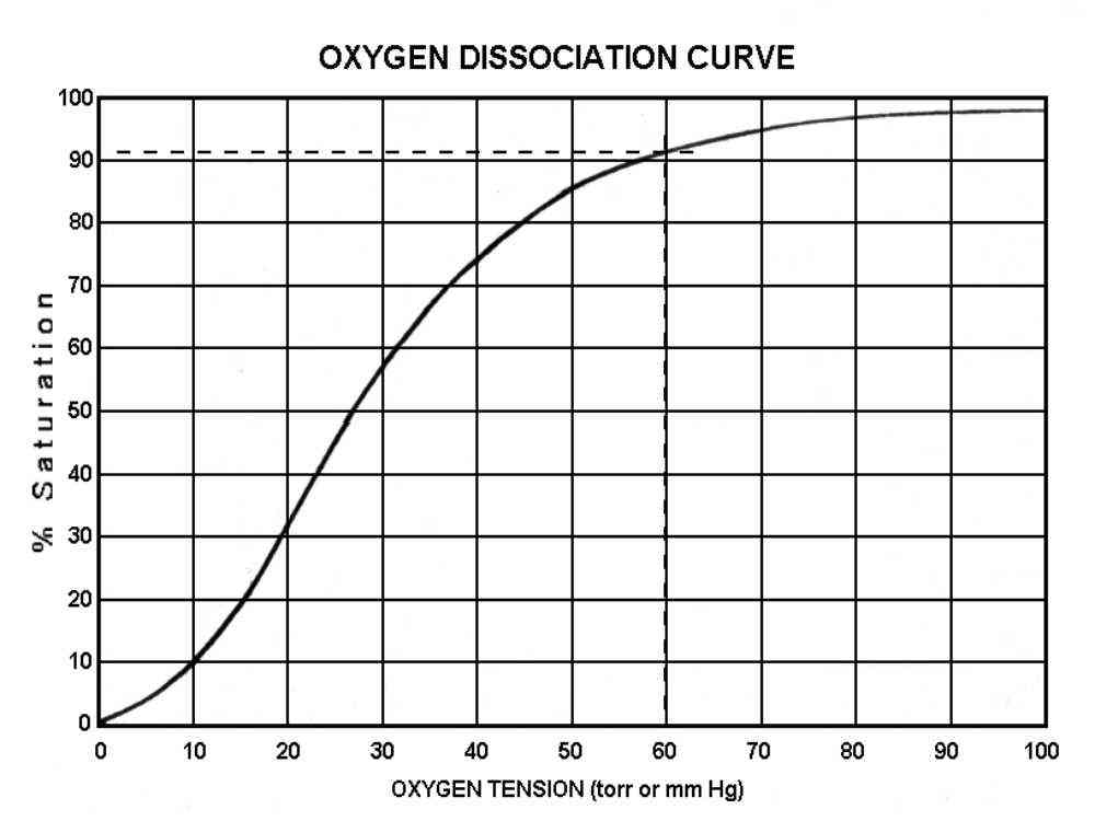 As Mentioned Before Oxygen Saturation Is Not Linearly Related To Tension But Instead Represents Directly The Amount Of That Carried By